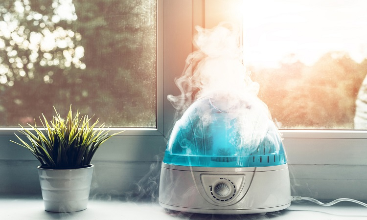 How To Fill A Humidifier – Daily Life Hacks